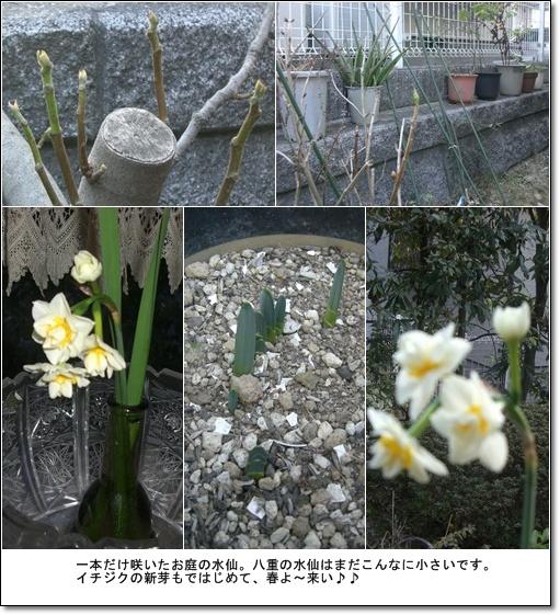 0902_11.jpg