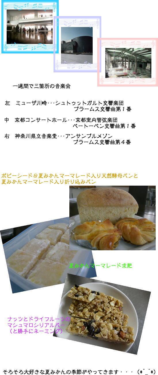 2008.2.23_02.jpg