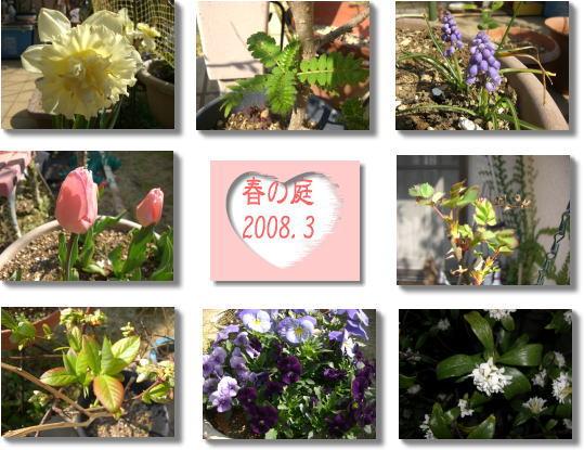 2008.3.30.jpg